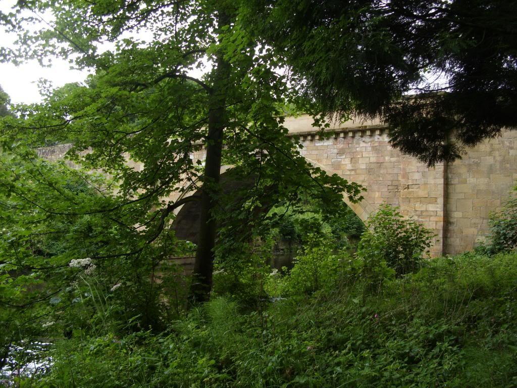 Alnwick - Alnwick Castle SDC12133