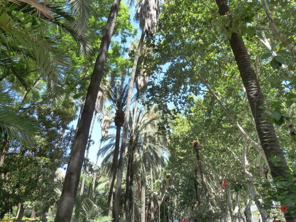 Spain, Costa del Sol, Malaga P1120006
