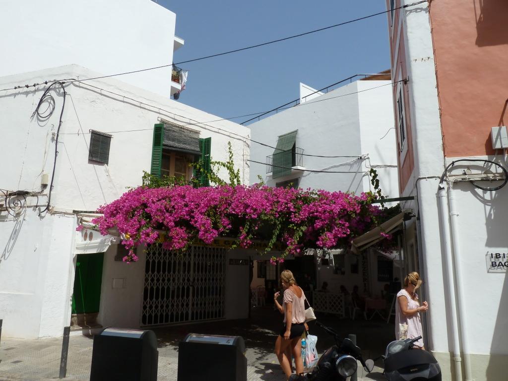 Balearic Islands, Ibiza, Ibiza Town P1120133