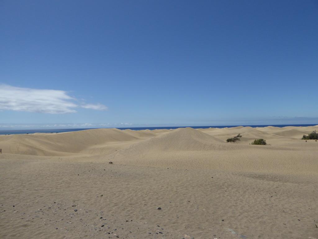 Canary Islands, Playa Del Ingles, Maspalomas  P1010035