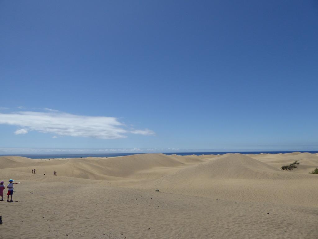 Canary Islands, Playa Del Ingles, Maspalomas  P1010037