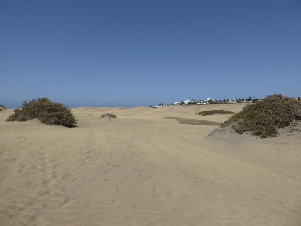 Canary Islands, Playa Del Ingles, Maspalomas  P1010321