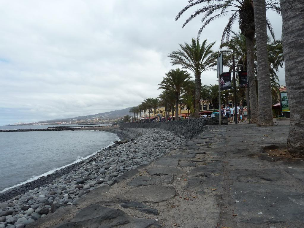 Canary Islands,Tenerife, A WALK THROUGH FROM LOS CRISTIANOS TO COSTA ADEJE P1090818