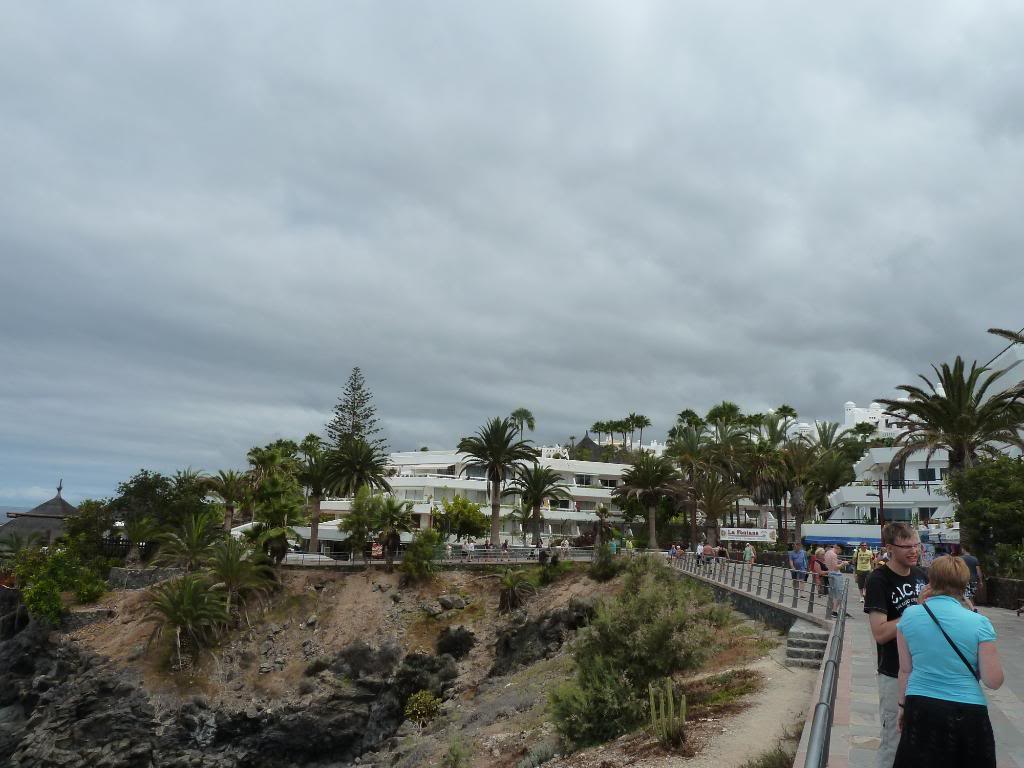 Canary Islands,Tenerife, A WALK THROUGH FROM LOS CRISTIANOS TO COSTA ADEJE P1090827