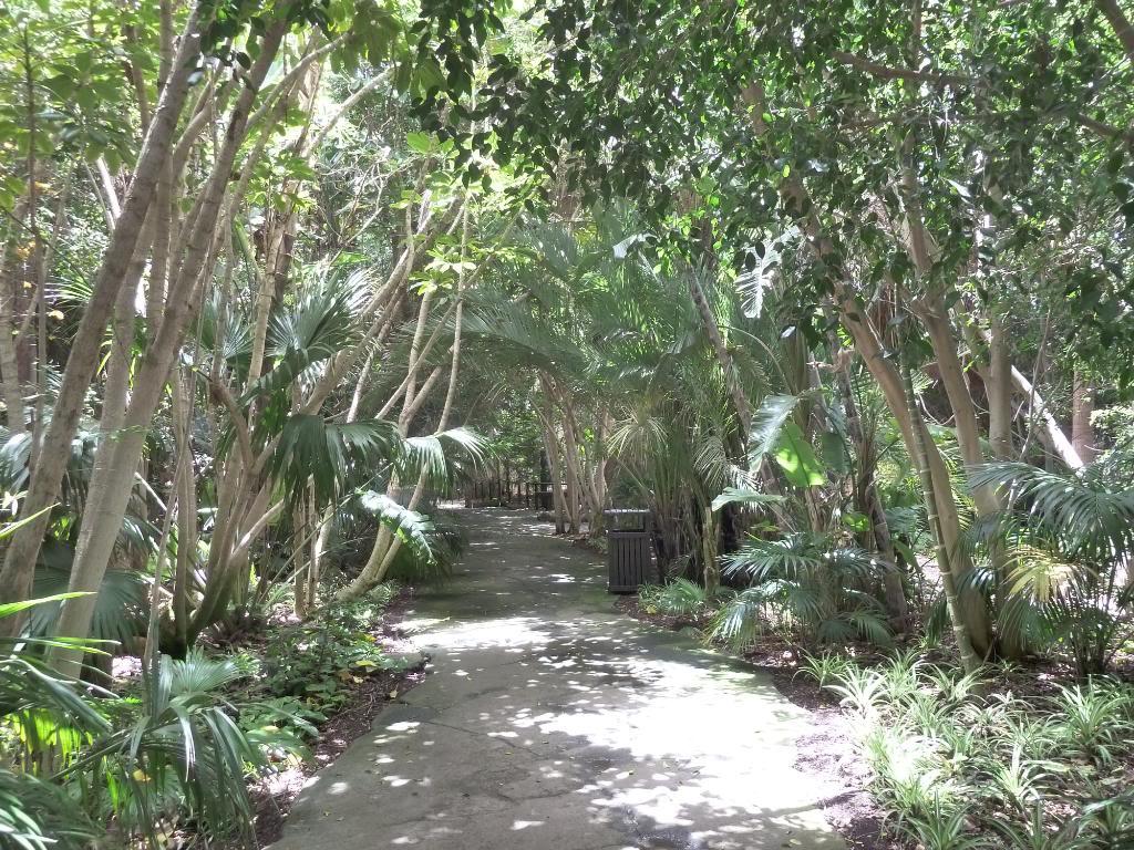 Canary Islands, Tenerife, The Jungle Park P1090981