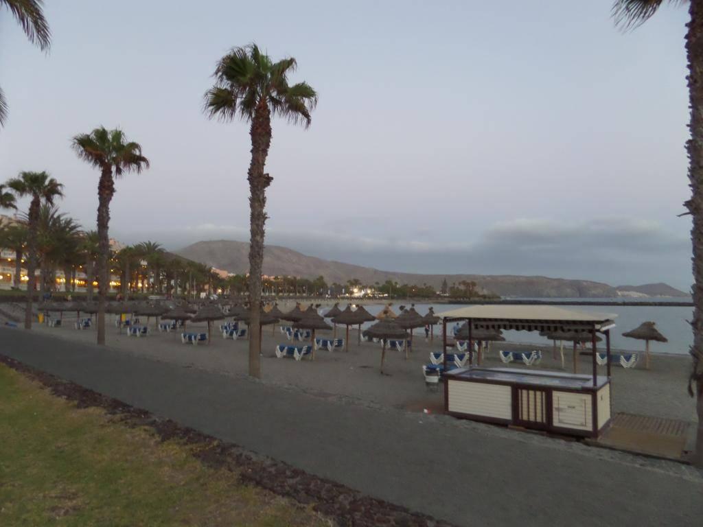 Tenerife, Playa De Las Americas 2014 SAM_0569