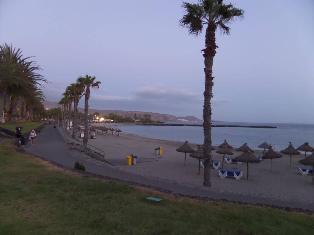 Tenerife, Playa De Las Americas 2014 SAM_0571