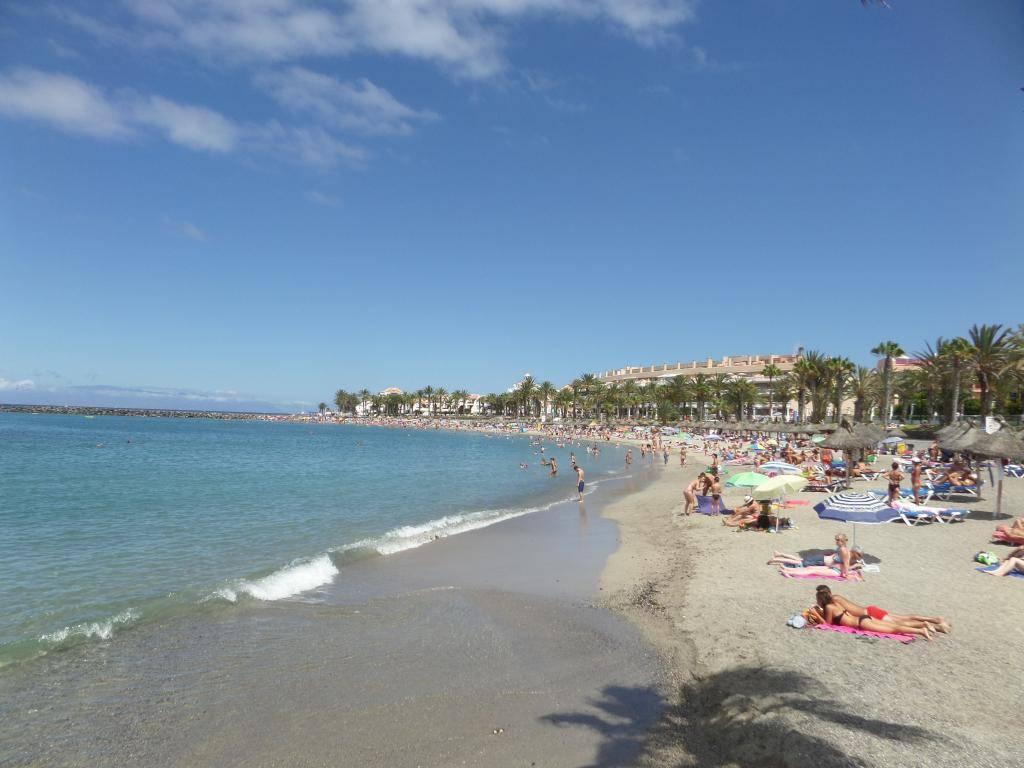 Tenerife, Playa De Las Americas 2014 SAM_0611