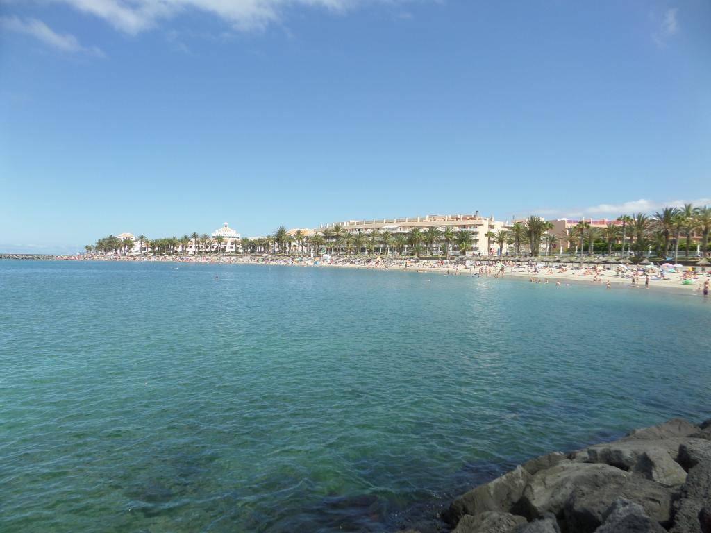 Tenerife, Playa De Las Americas 2014 SAM_0613