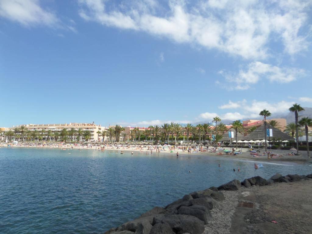 Tenerife, Playa De Las Americas 2014 SAM_0614