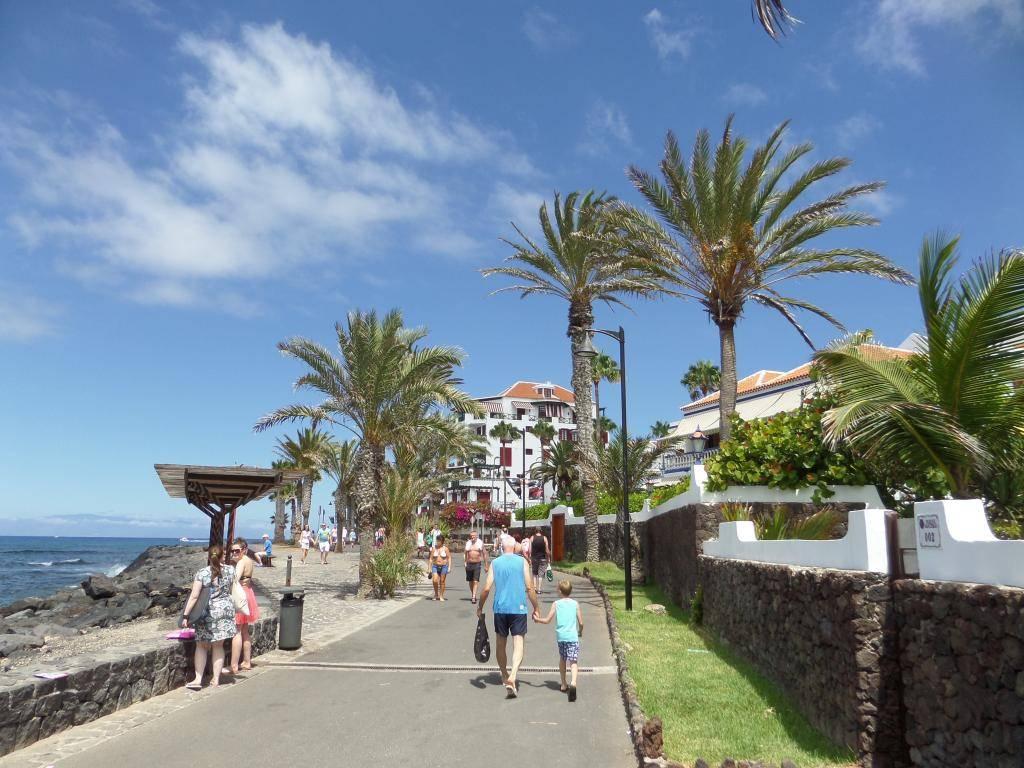 Tenerife, Playa De Las Americas 2014 SAM_0617