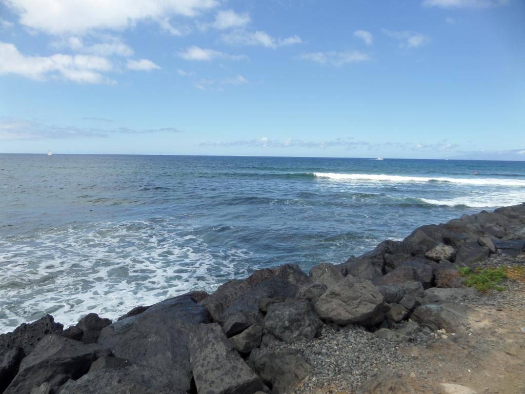 Tenerife, Playa De Las Americas 2014 SAM_0623