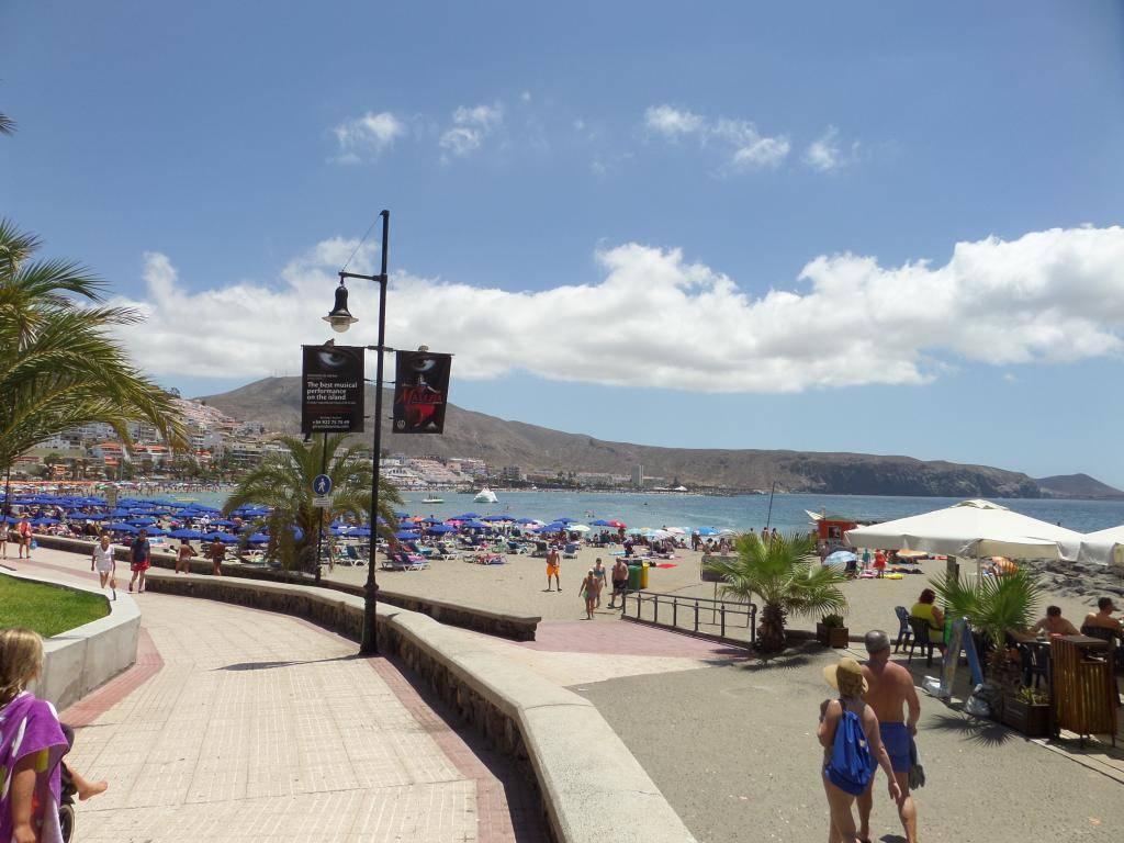 Tenerife, Playa De Las Americas 2014 SAM_0657
