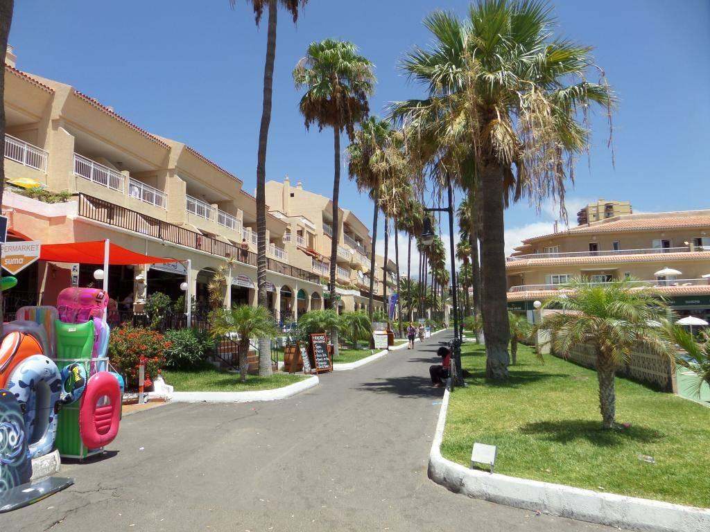 Tenerife, Playa De Las Americas 2014 SAM_0660