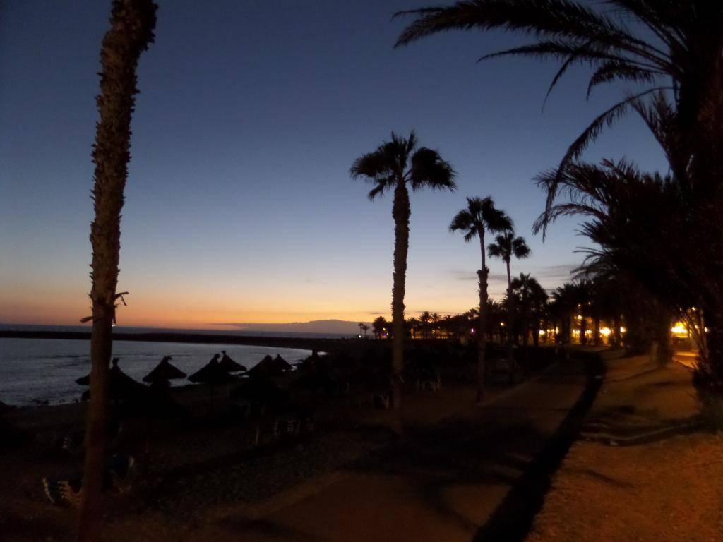 Tenerife, Playa De Las Americas 2014 SAM_0670