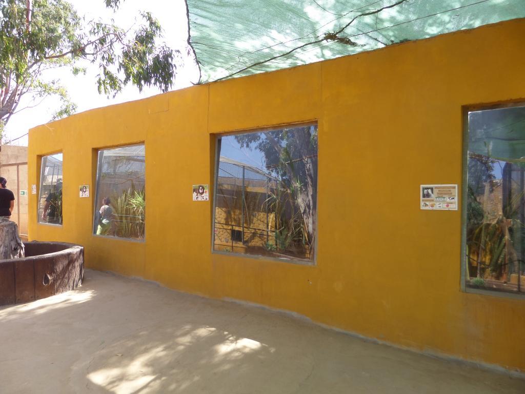 Tenerife, Monkey Park SAM_0711
