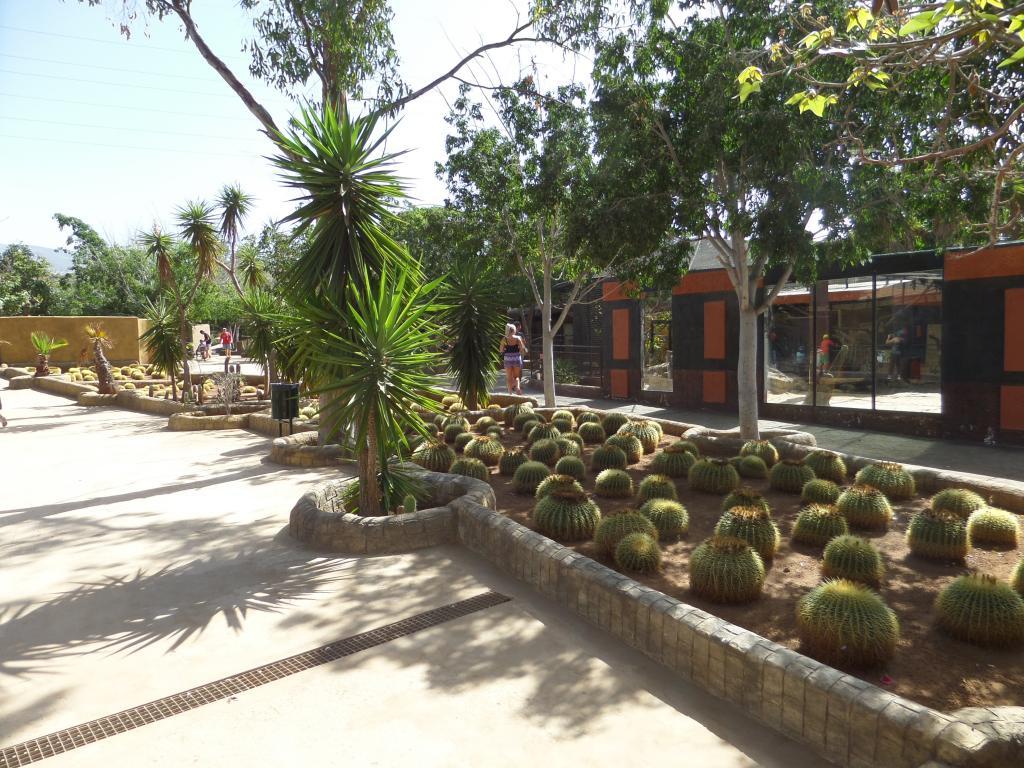 Tenerife, Monkey Park SAM_0715