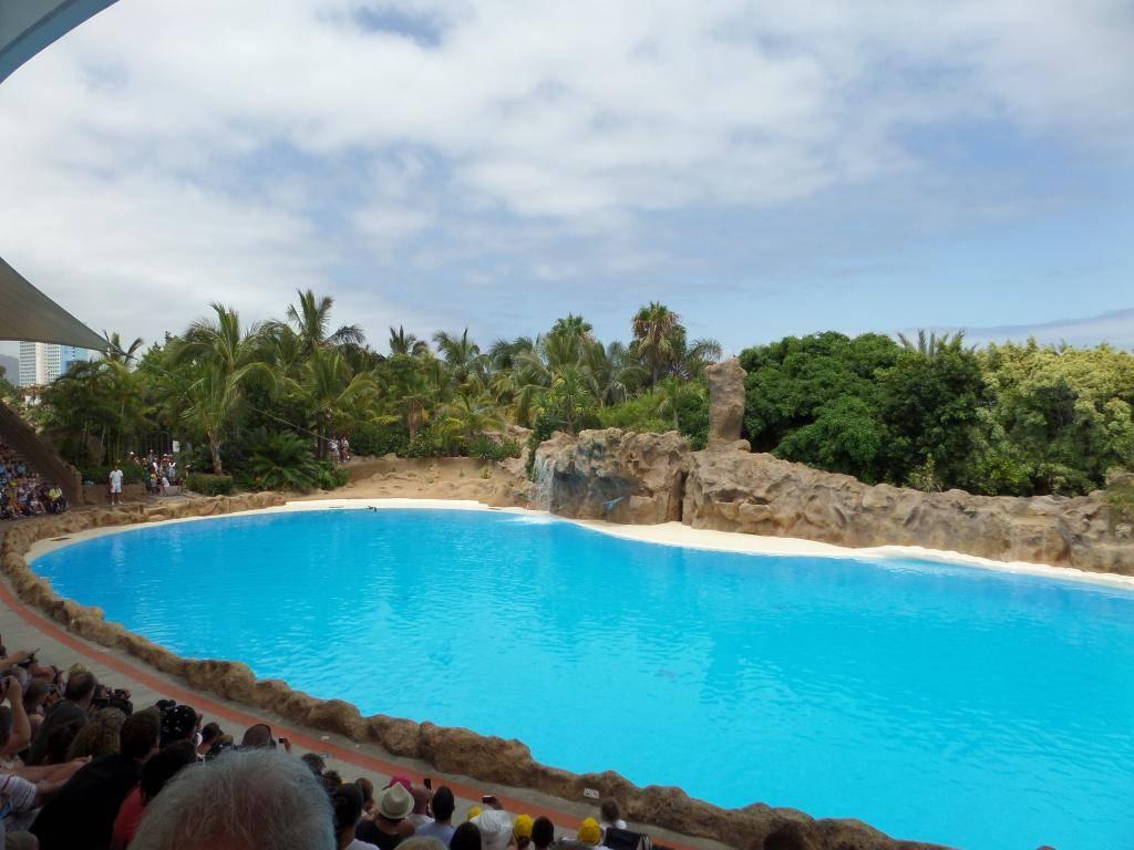 Tenerife, Loro Parque SAM_0822