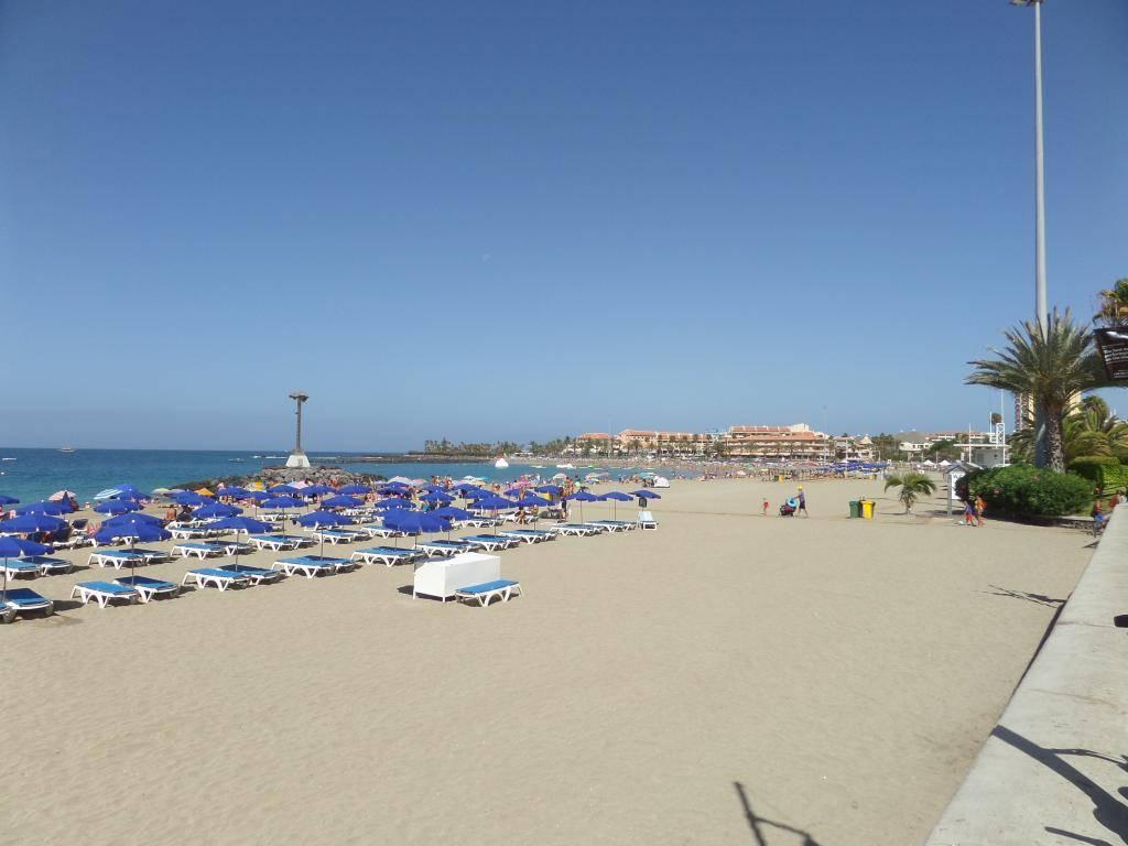 Tenerife, Playa De Las Americas 2014 SAM_0918