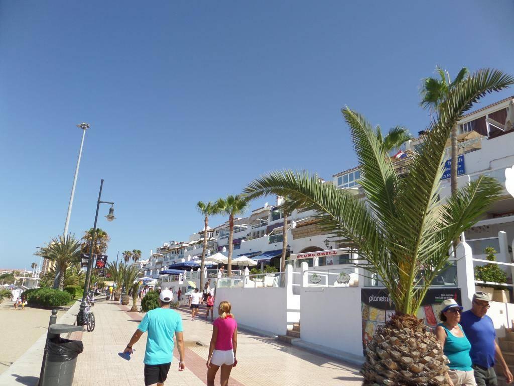 Tenerife, Playa De Las Americas 2014 SAM_0919