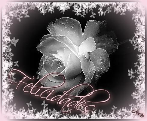 Rosa con Mascara Blanca y Sombra Rosada Felicidades_zpsn9co0ilz