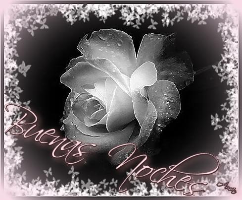 Rosa con Mascara Blanca y Sombra Rosada Noches_zpsfliv9ni8