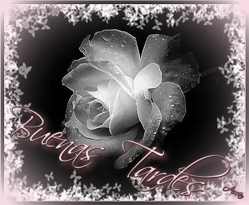 Rosa con Mascara Blanca y Sombra Rosada Tardes_zps0xatl4am