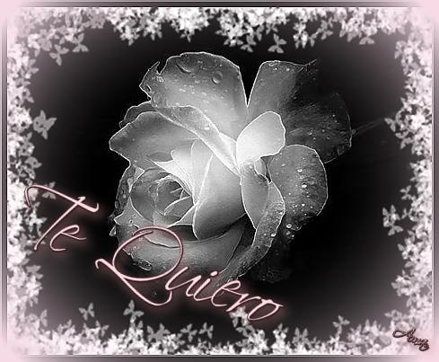 Rosa con Mascara Blanca y Sombra Rosada Te%20quiero_zpsicrhg5mc