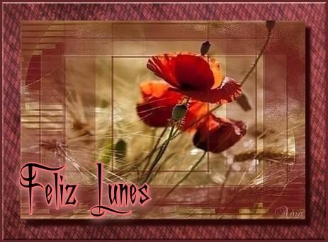 Amapola Lindisima Amapola no seas tan Ingrata y Quiereme  Lunes%202_zps2uwuvzdd