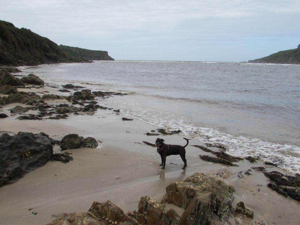 Devon Beach 0c233003e7d7523bfbd601cfc5fa5e4f_zps95598318
