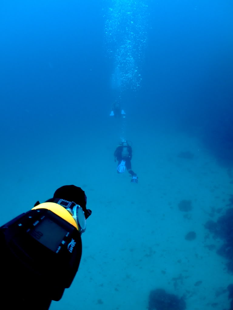 mission Test : JLC Master Compressor Diving Chrono en plongee profonde (part 2) DSCF3885
