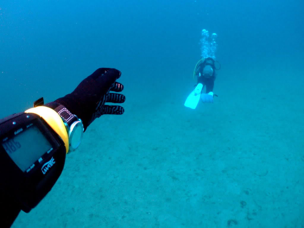mission Test : JLC Master Compressor Diving Chrono en plongee profonde (part 2) DSCF3886