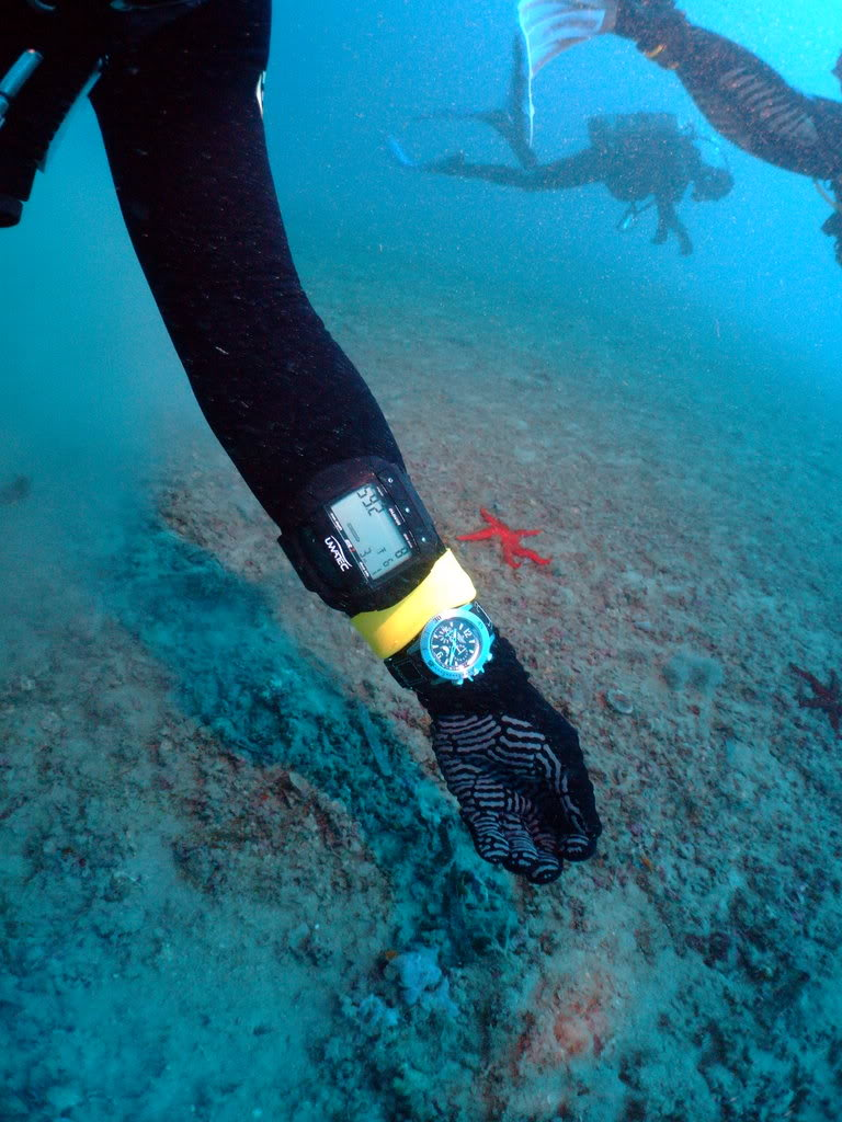 mission Test : JLC Master Compressor Diving Chrono en plongee profonde (part 2) DSCF3890