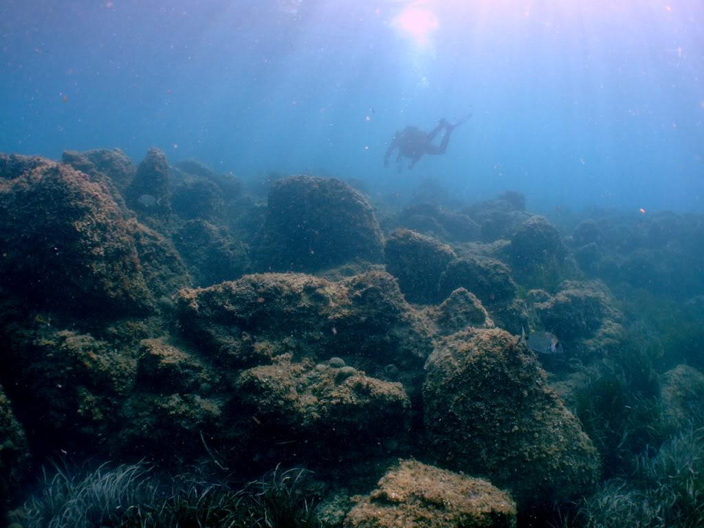 mission Test : JLC Master Compressor Diving Chrono en plongee profonde (part 2) DSCF3937