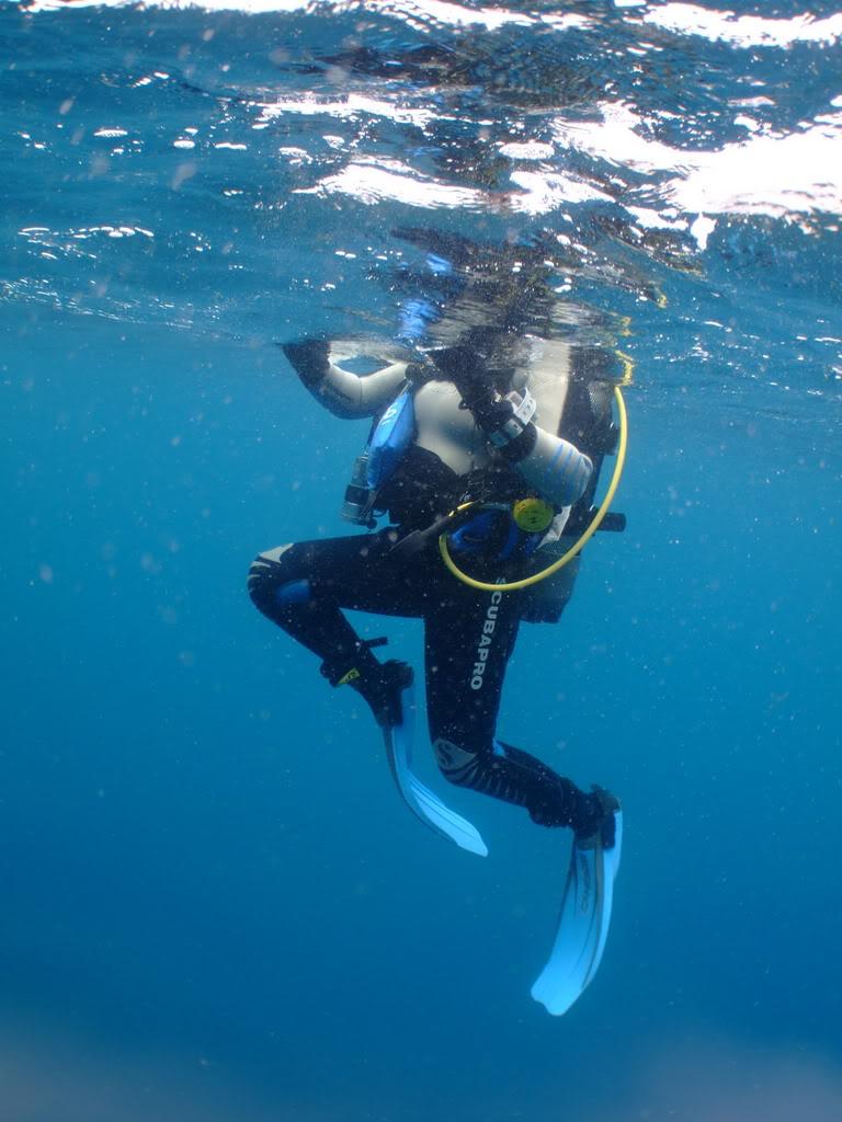 mission Test : JLC Master Compressor Diving Chrono en plongee profonde (part 2) DSCF3943