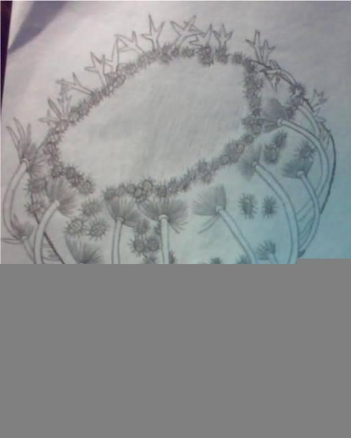 Drawing!!!!!!!!!!!!!!!!!!!!!!!!!!!! IMG000040