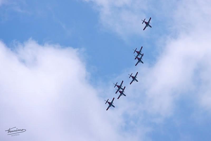 Patrulla Aguila C-10150D_005reduc
