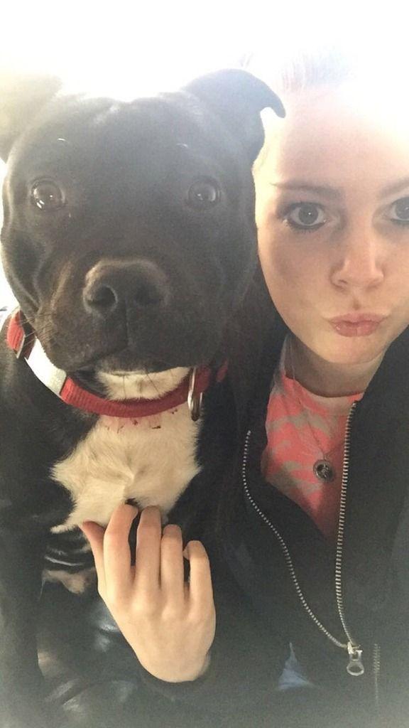 Buddy loves a selfie IMG-20160329-WA0000_zpsfworwysj
