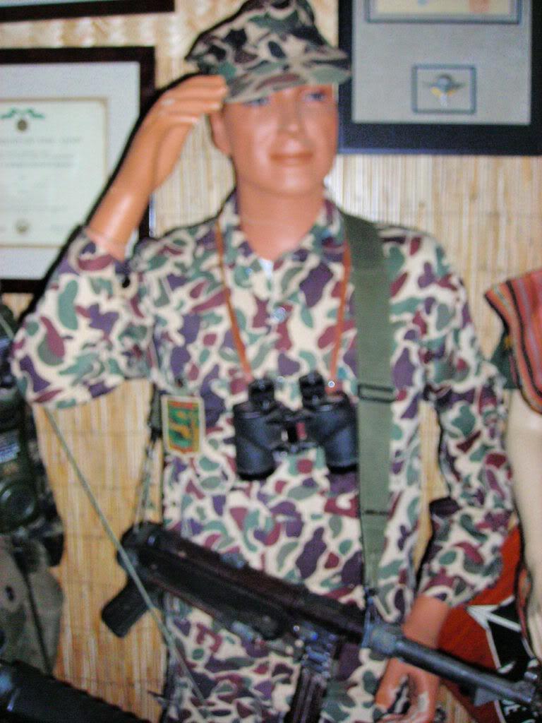 Some Special Forces nam stuff FSCN9924