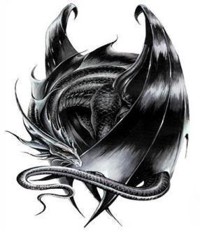 Uprise-dragon RP/(Accepting) Shadow