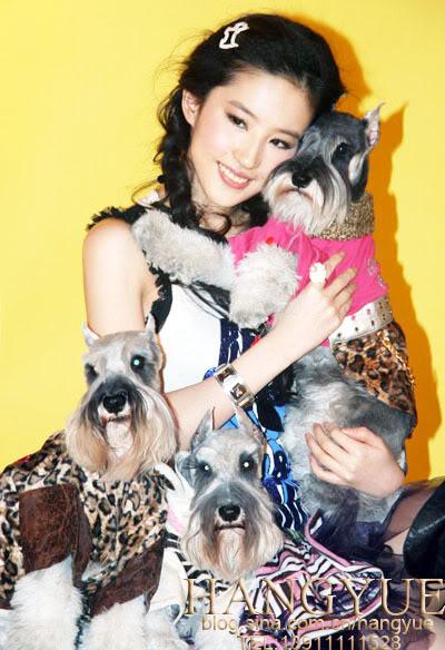 รวมภาพถ่ายจาก Blog และ Sina weibo Hang Yue  4a6856e24450778cb849d690