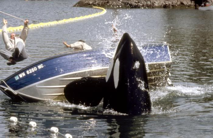 FreeWilly 2 DVD FreeWilly2-02