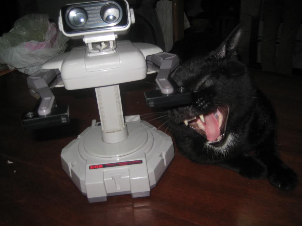 Las mascotas y los games.  Walleeeee009