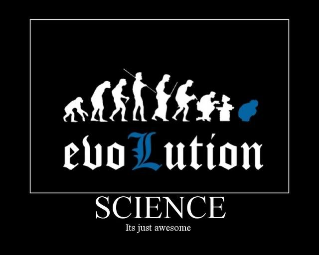 Photo Gallery of Absolute Randomness - Page 10 Evolution