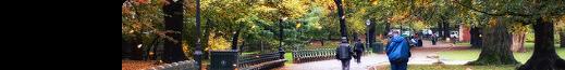 • Central Park
