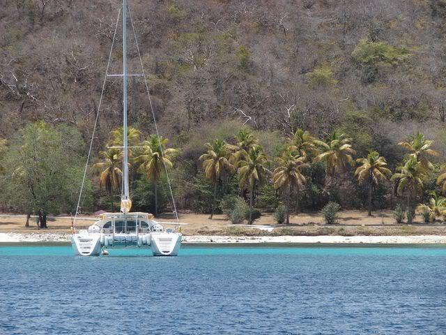 Croisière aux Grenadines Edition 2008 !!! DSC00715