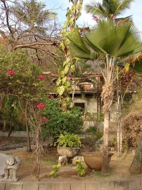 Croisière aux Grenadines Edition 2008 !!! DSC00720