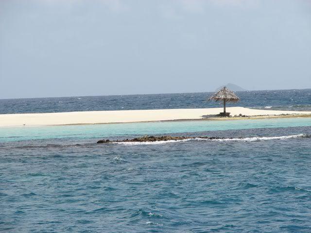 Croisière aux Grenadines Edition 2008 !!! DSC00838
