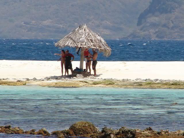 Croisière aux Grenadines Edition 2008 !!! DSC00845