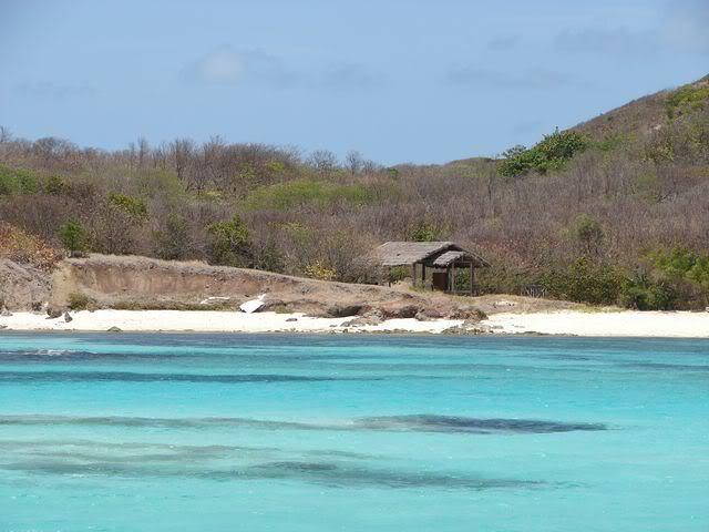 Croisière aux Grenadines Edition 2008 !!! DSC00859